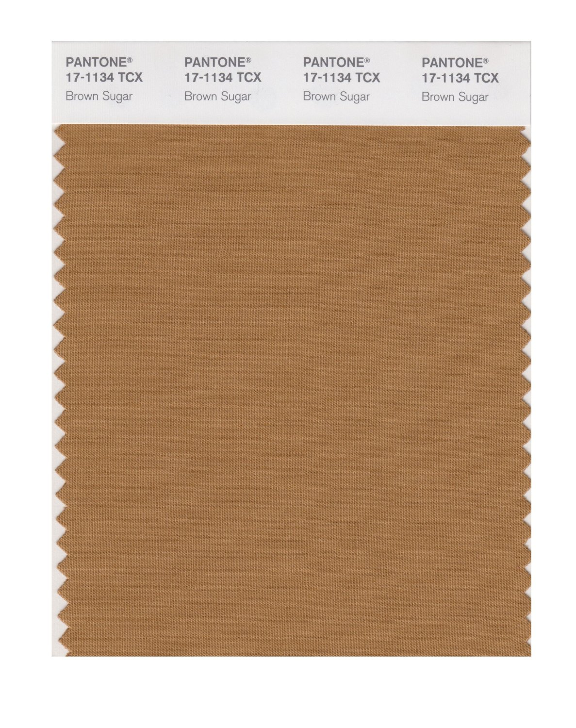 Pantone Smart Swatch 17-1134 Brown Sugar