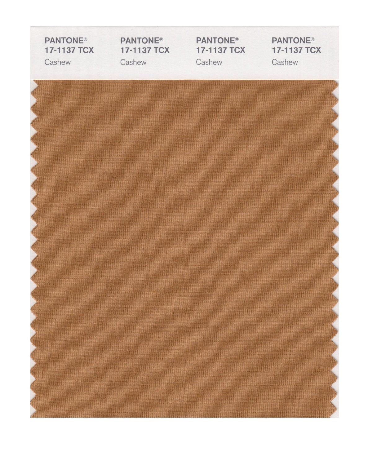 Pantone Smart Swatch 17-1137 Cashew