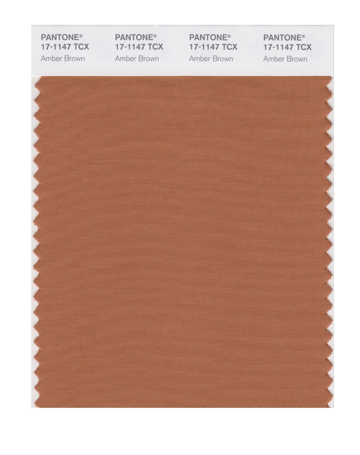 Pantone Smart Swatch 17-1147 Amber Brown