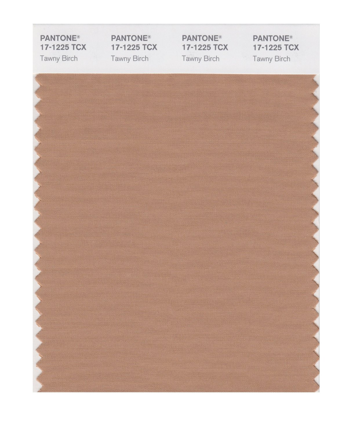 Pantone Smart Swatch 17-1225 Tawny Birch