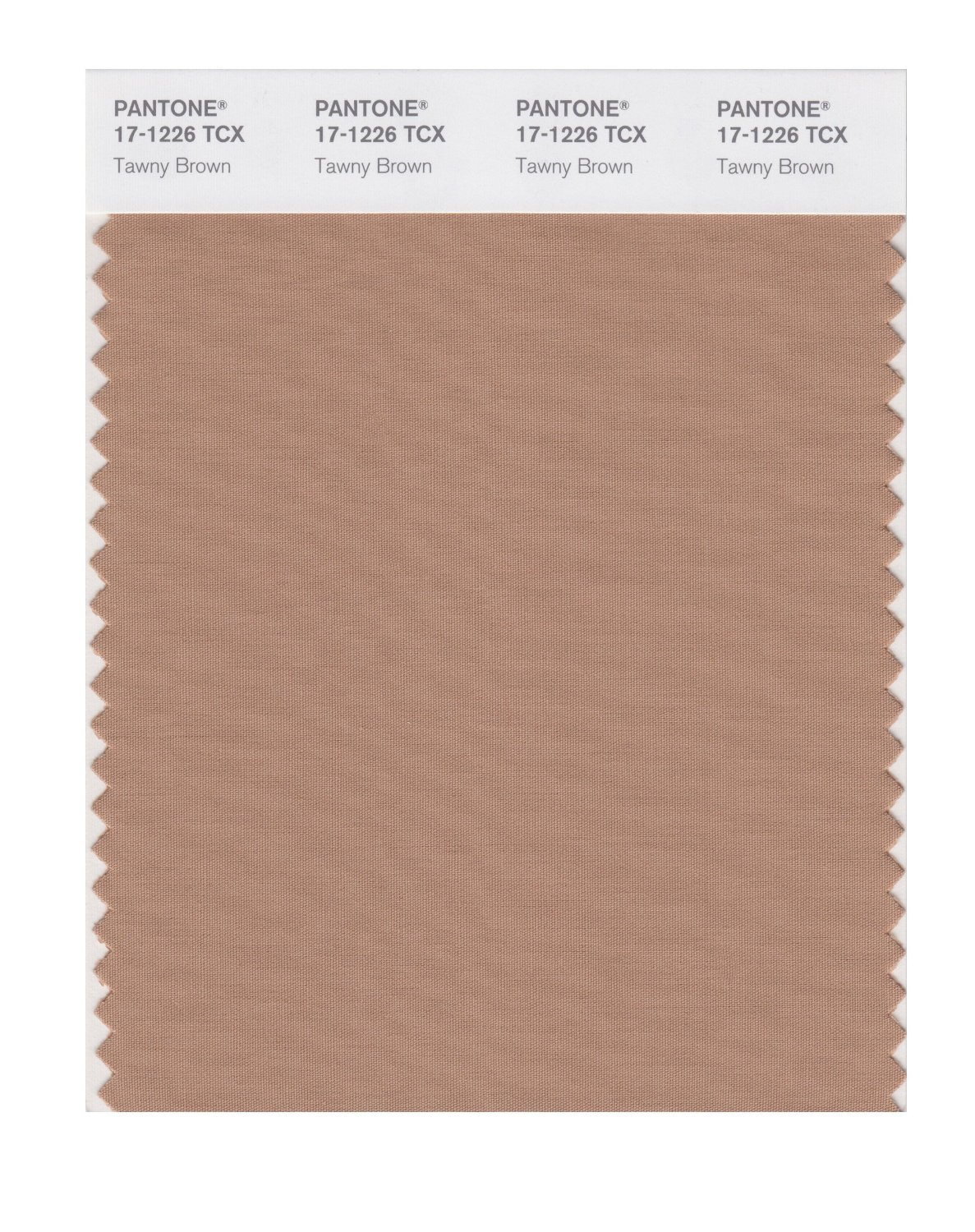 Pantone Smart Swatch 17-1226 Tawny Brown