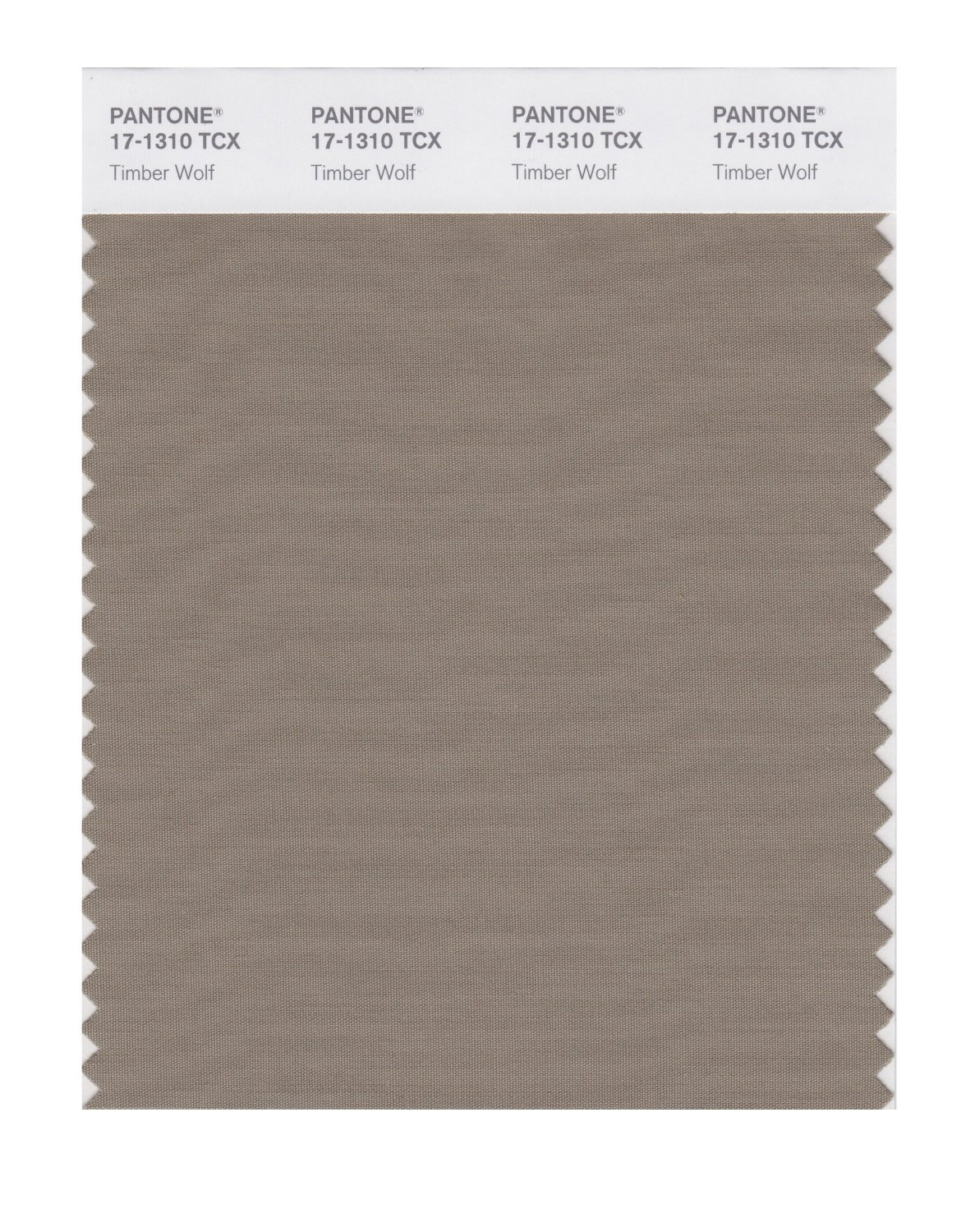 Pantone Smart Swatch 17-1310 Timber Wolf
