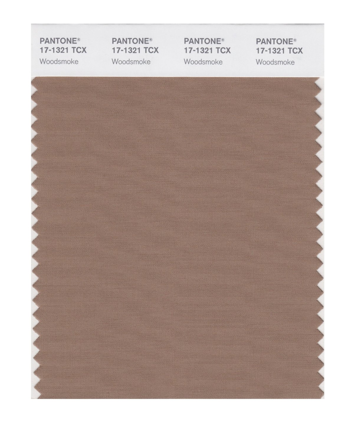 Pantone Smart Swatch 17-1321 Woodsmoke