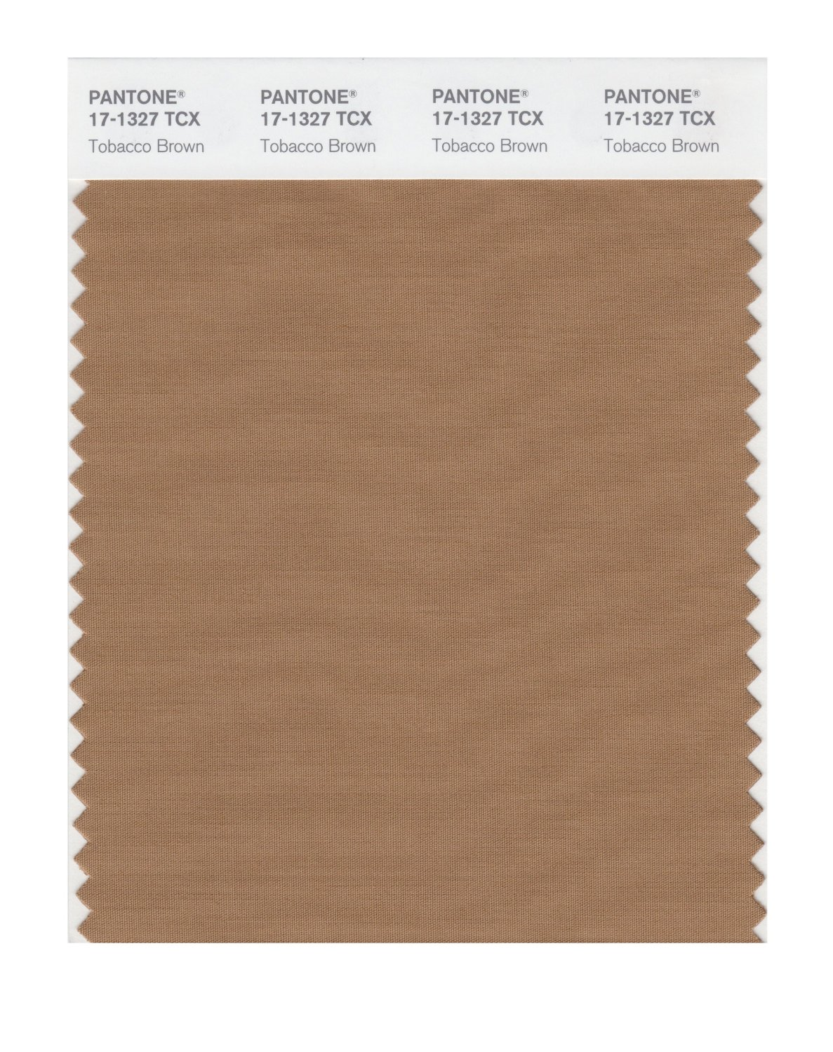 Pantone Smart Swatch 17-1327 Tobacco Brown