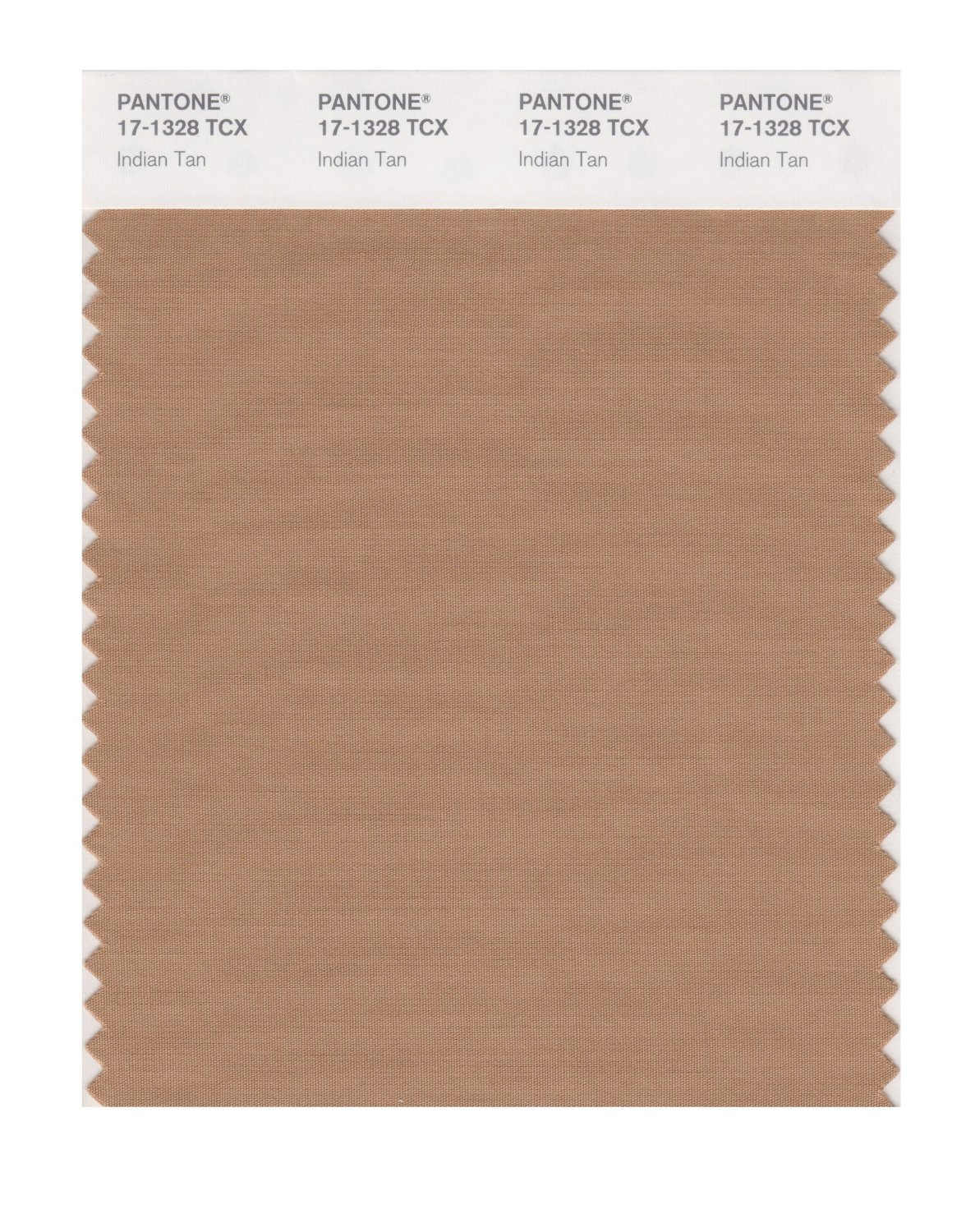 Pantone Smart Swatch 17-1328 Indian Tan