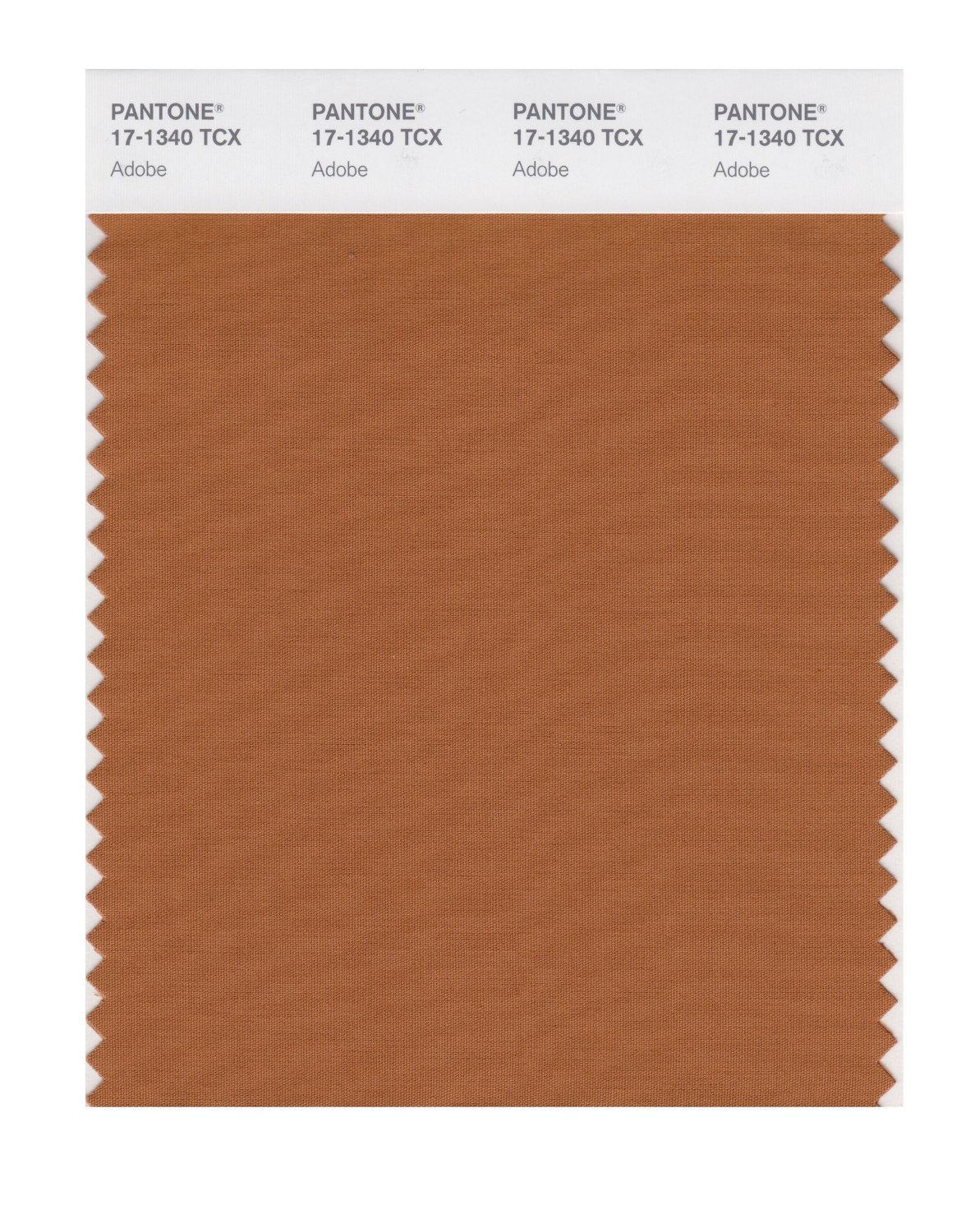 Buy pantone smart swatch 17 1340 adobe for Where to buy pantone paint
