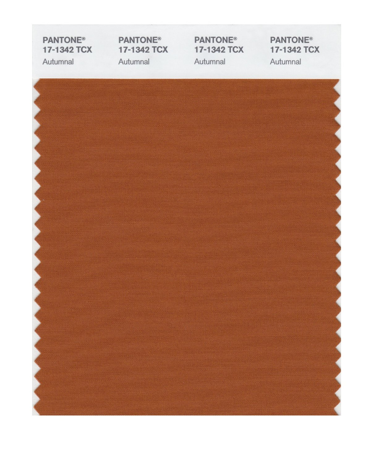 Pantone Smart Swatch 17-1342 Autumnal
