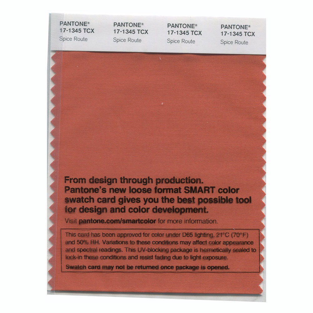 Pantone Smart Swatch 17-1345 Spice Route