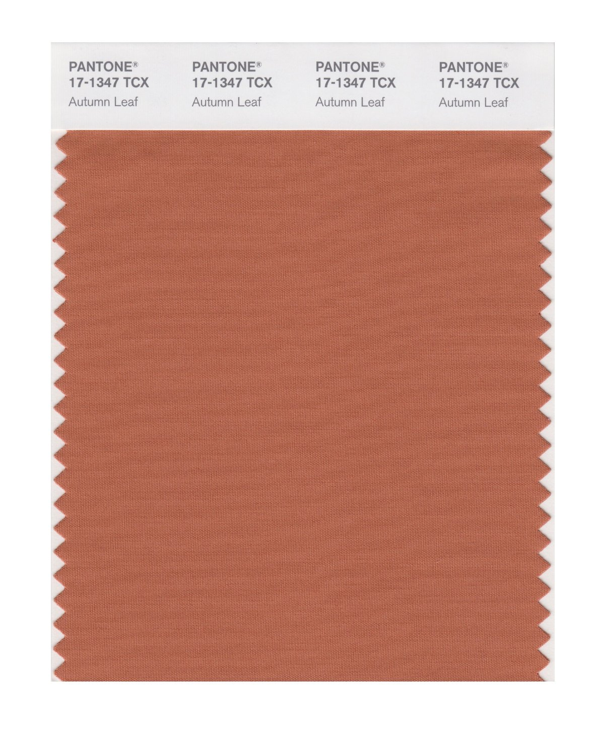Pantone Smart Swatch 17-1347 Autumn Leaf