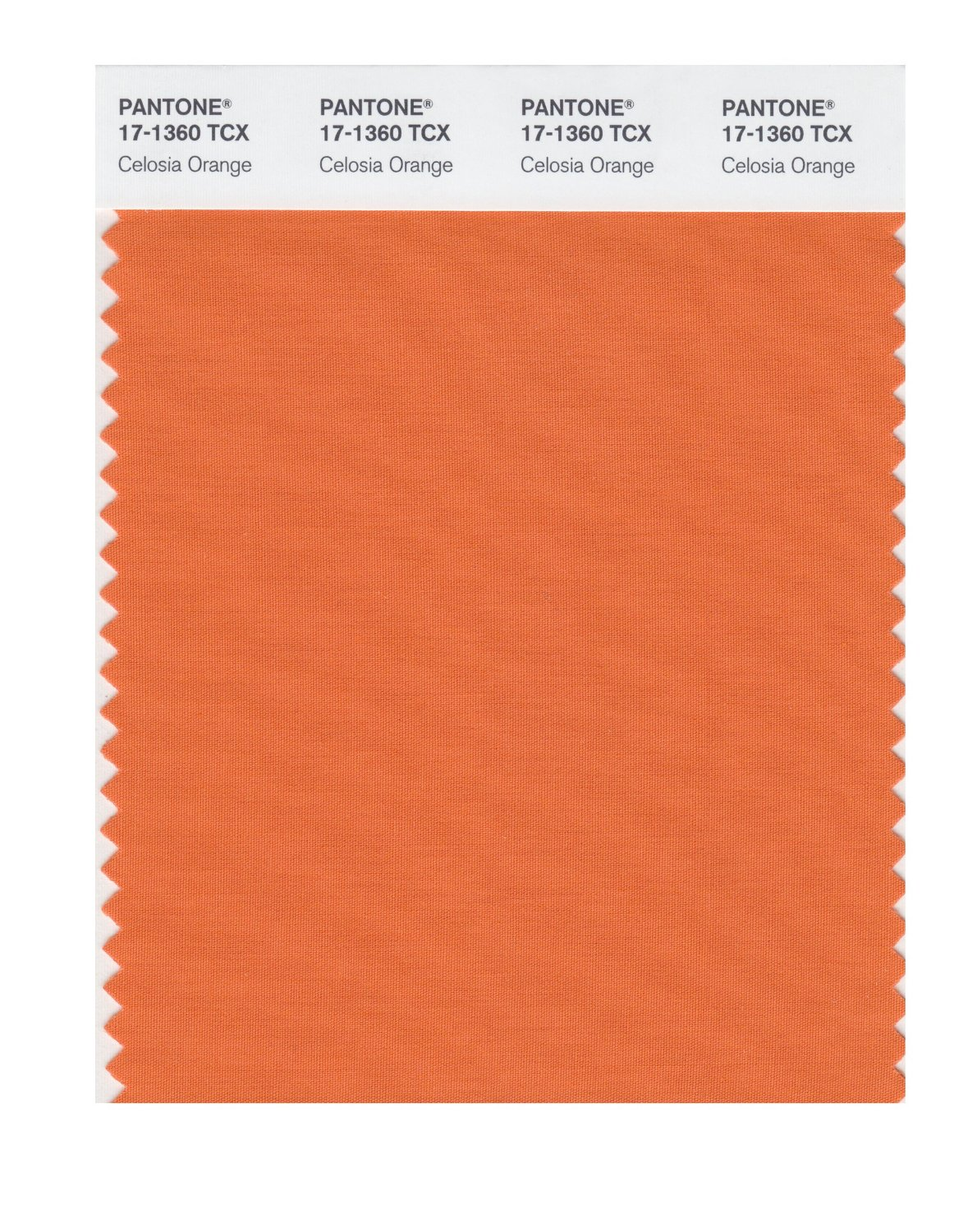 Pantone Smart Swatch 17-1360 Celosia Orange