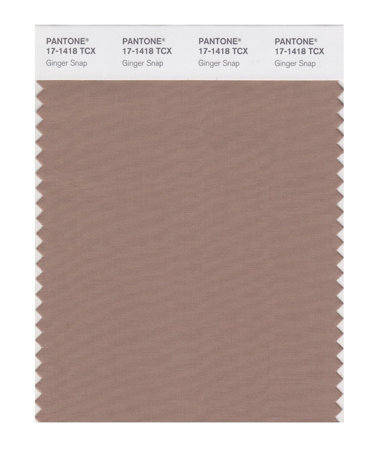 Pantone Smart Swatch 17-1418 Ginger Snap