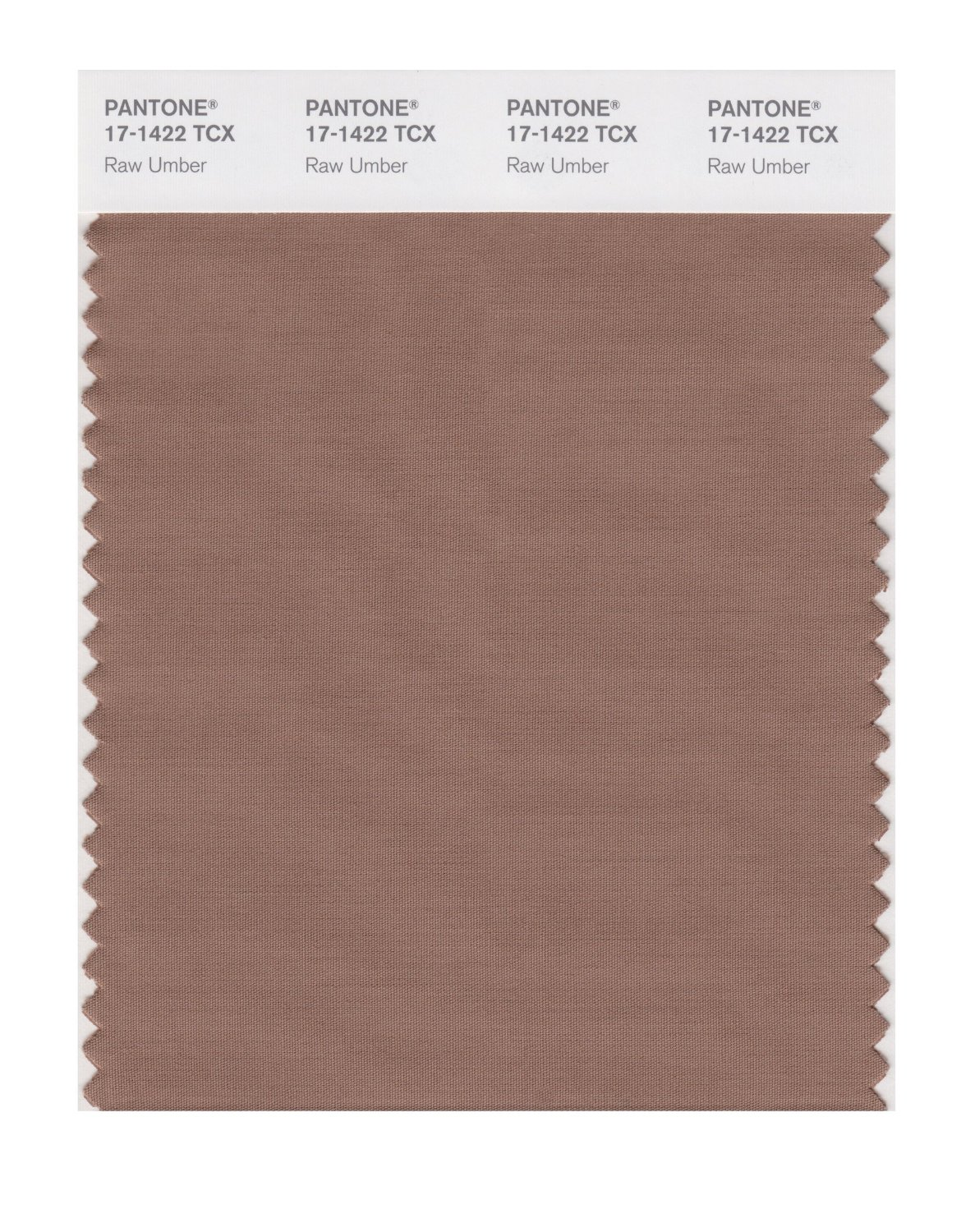 Pantone Smart Swatch 17-1422 Raw Umber