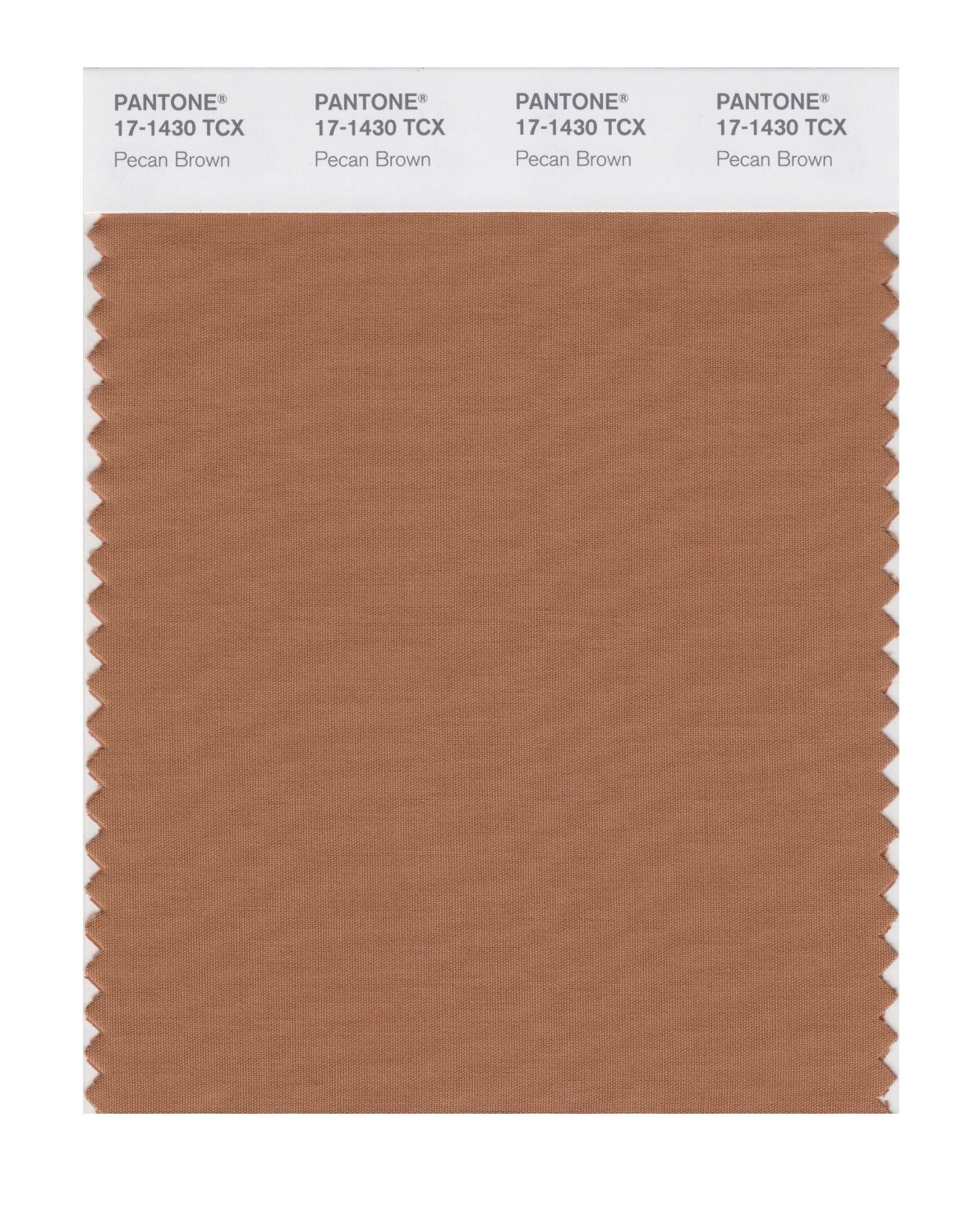 Pantone Smart Swatch 17-1430 Pecan Brown
