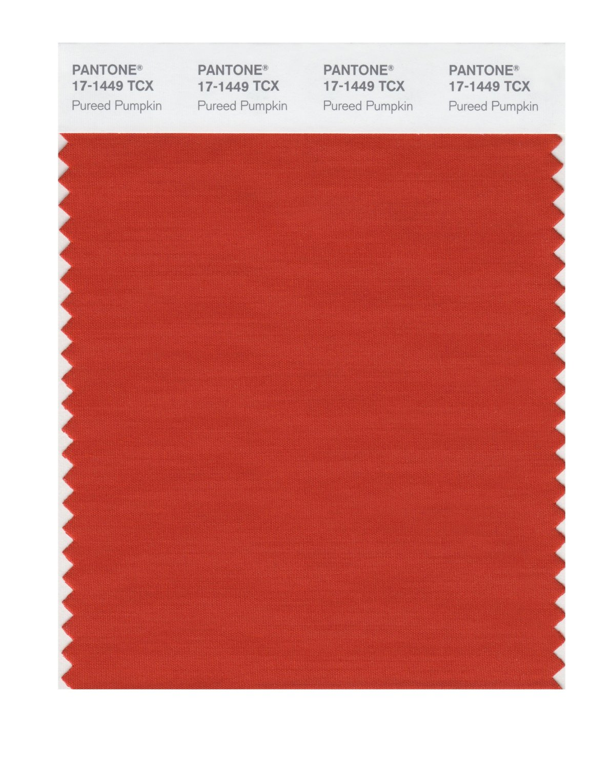 Pantone Smart Swatch 17-1449 Pureed Pumpkin