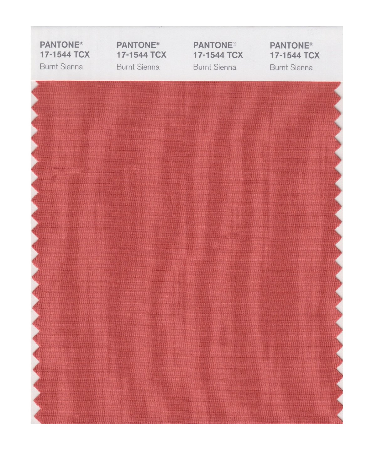 Pantone Smart Swatch 17-1544 Burnt Sienna