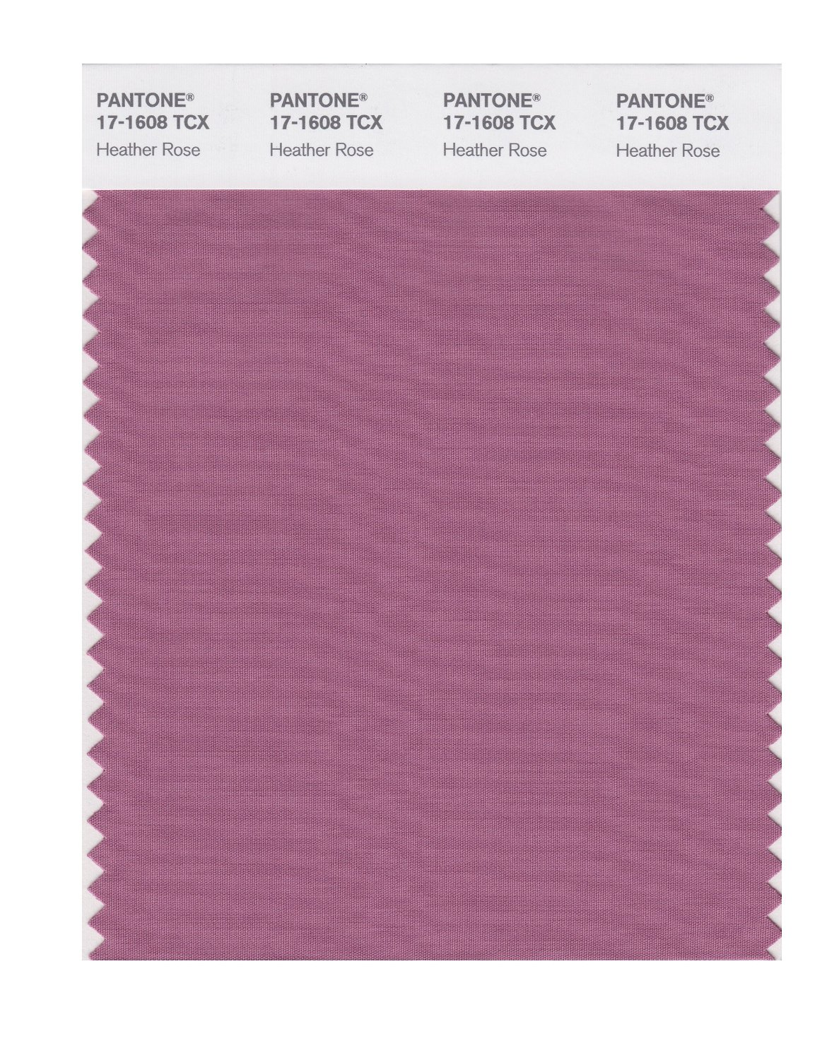 Pantone Smart Swatch 17-1608 Heather Rose