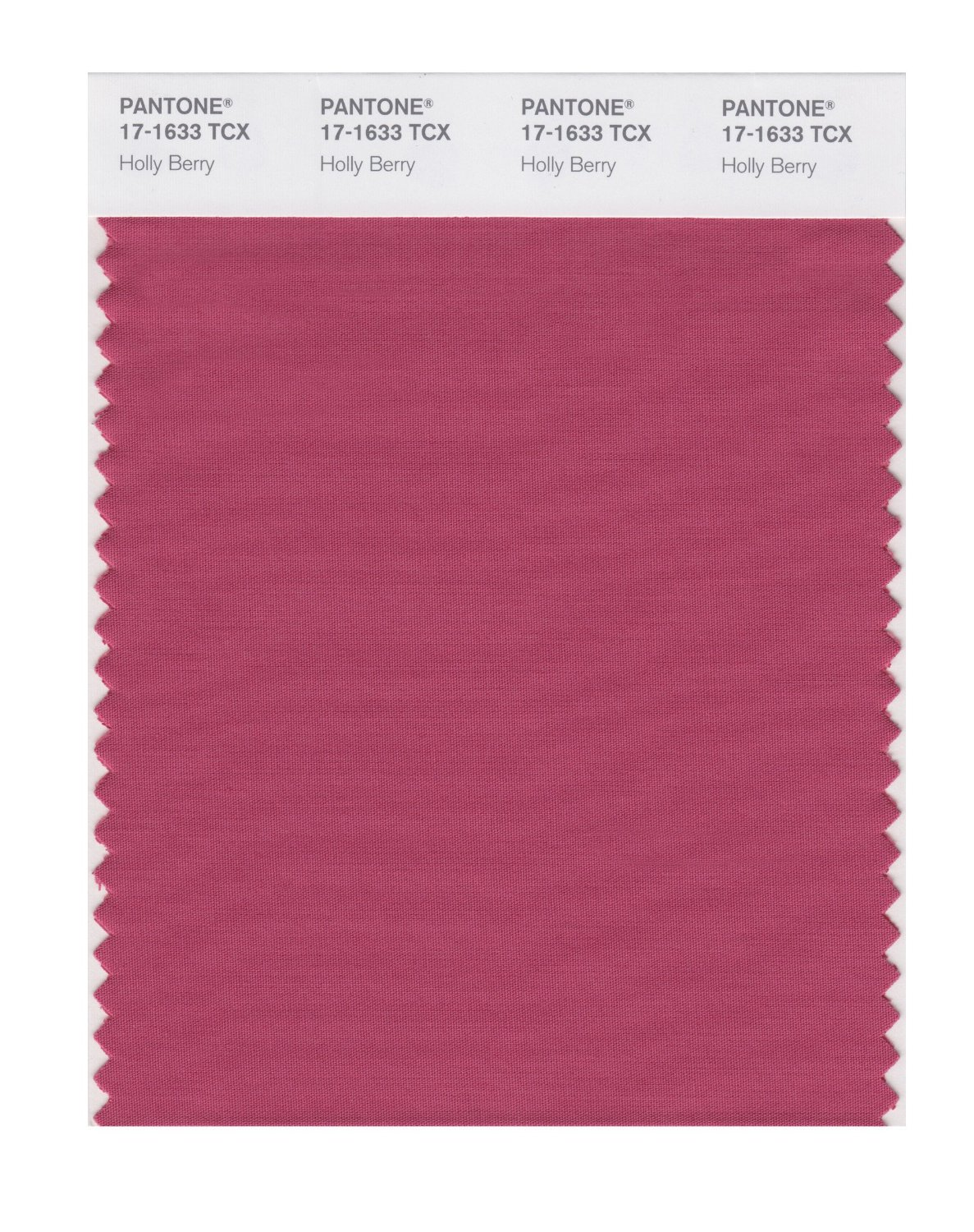 Pantone Smart Swatch 17-1633 Holly Berry