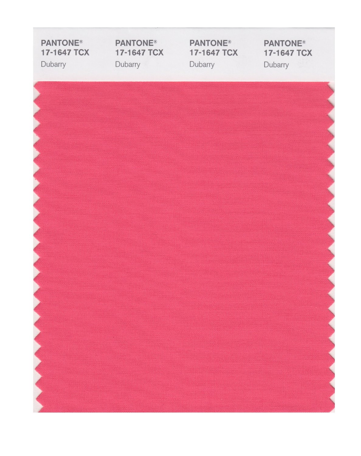 Pantone Smart Swatch 17-1647 Dubarry