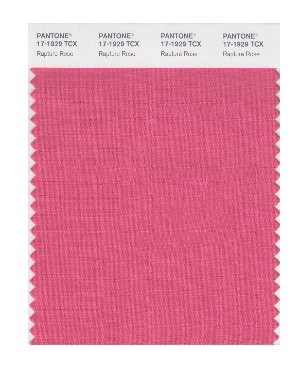 Pantone Smart Swatch 17-1929 Rapture Rose