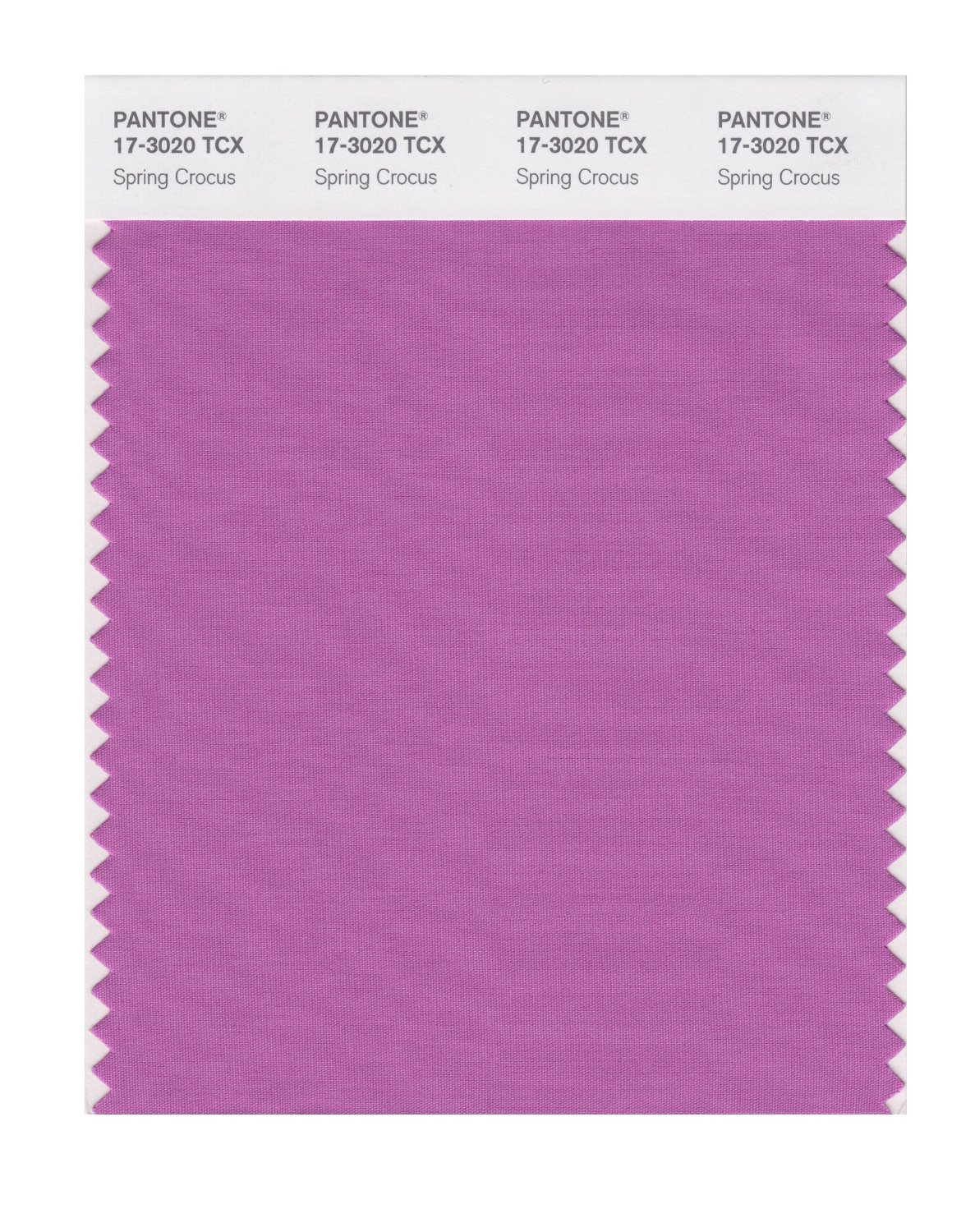Pantone Smart Swatch 17-3020 Spring Crocus