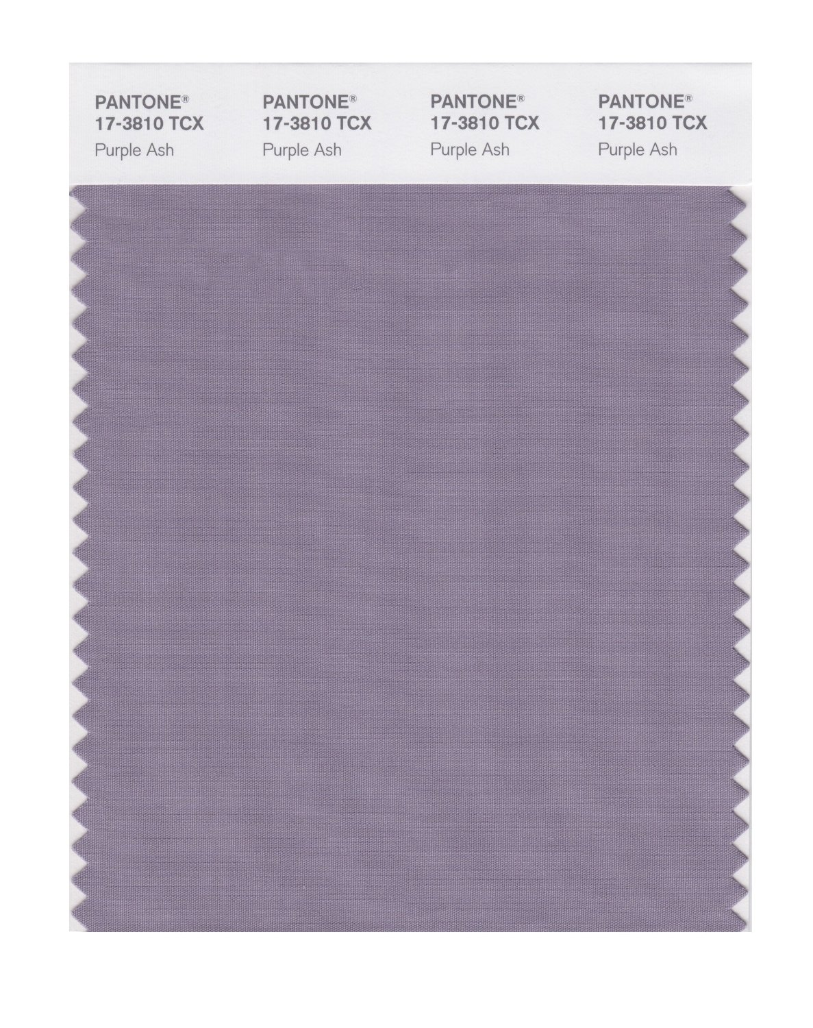 Pantone Smart Swatch 17-3810 Purple Ash