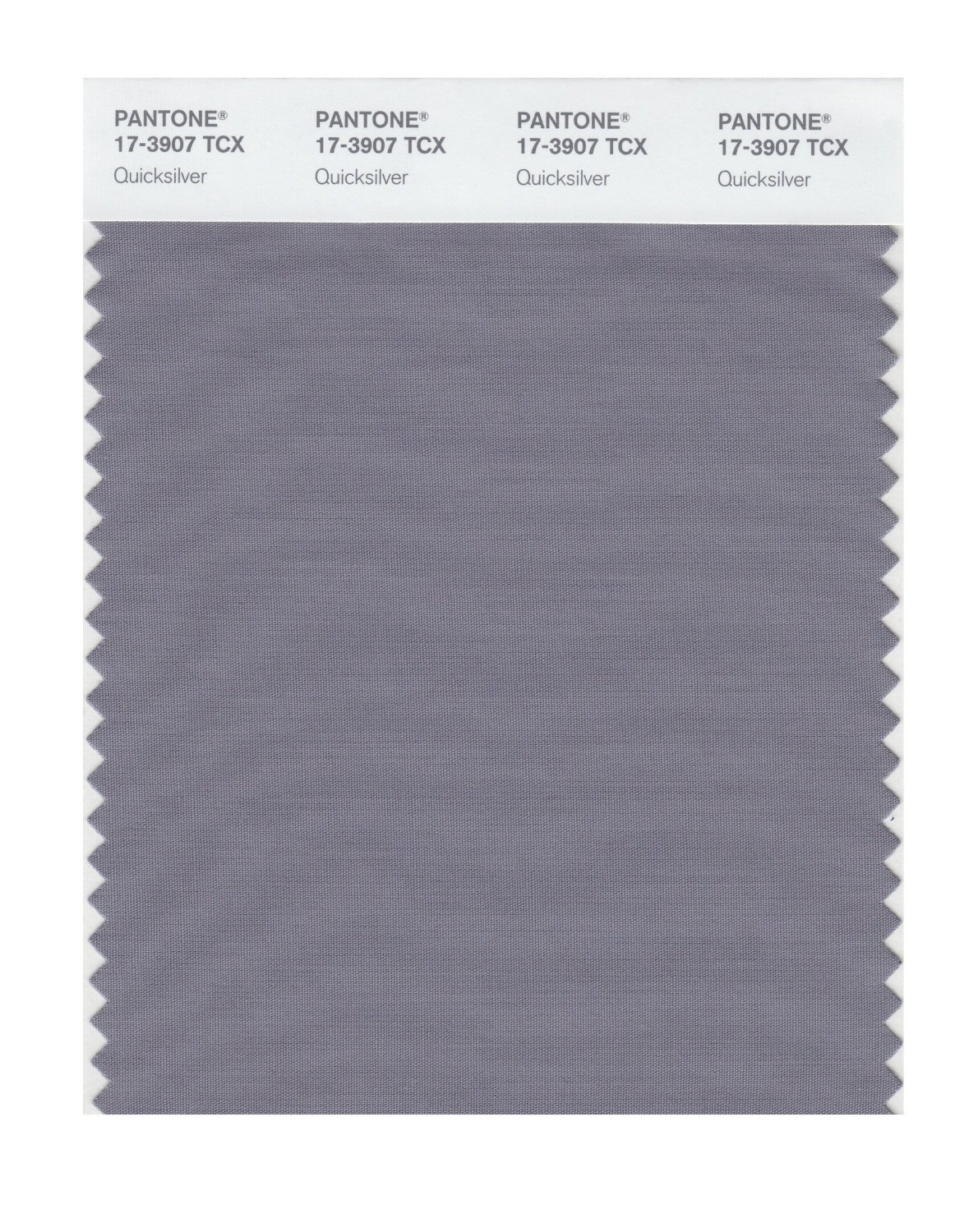 Pantone Smart Swatch 17-3907 Quicksilver