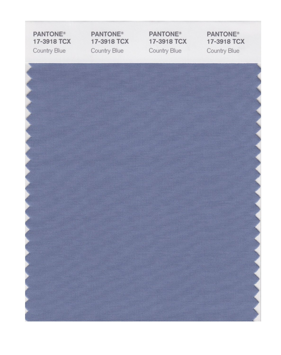 Pantone Smart Swatch 17-3918 Country Blue
