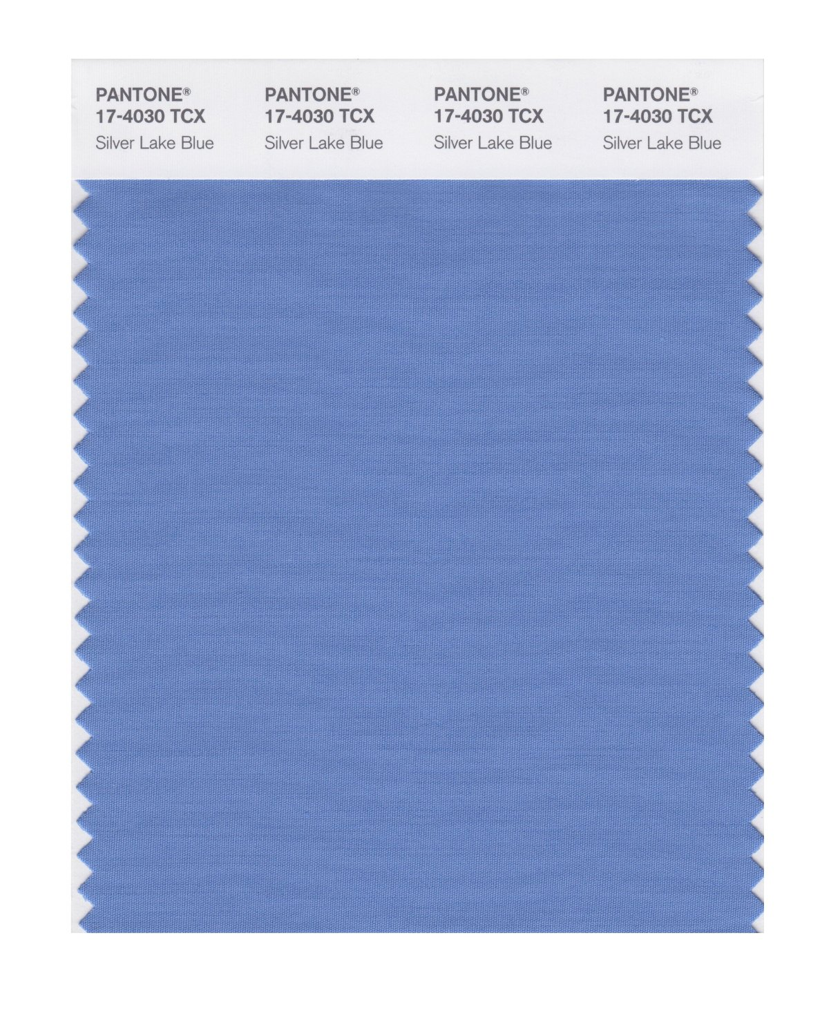 Pantone Smart Swatch 17-4030 Silver Lake Blue