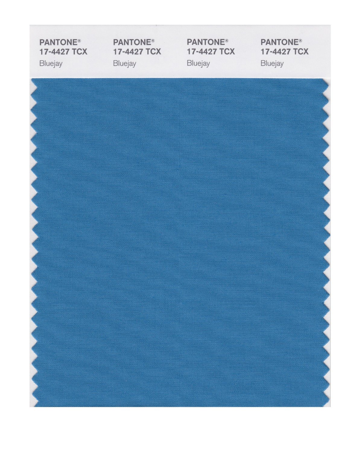 Pantone Smart Swatch 17-4427 Bluejay
