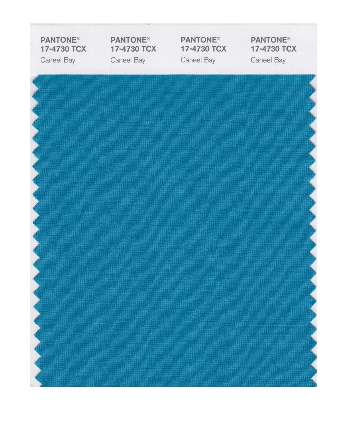 Pantone Smart Swatch 17-4730 Caneel Bay