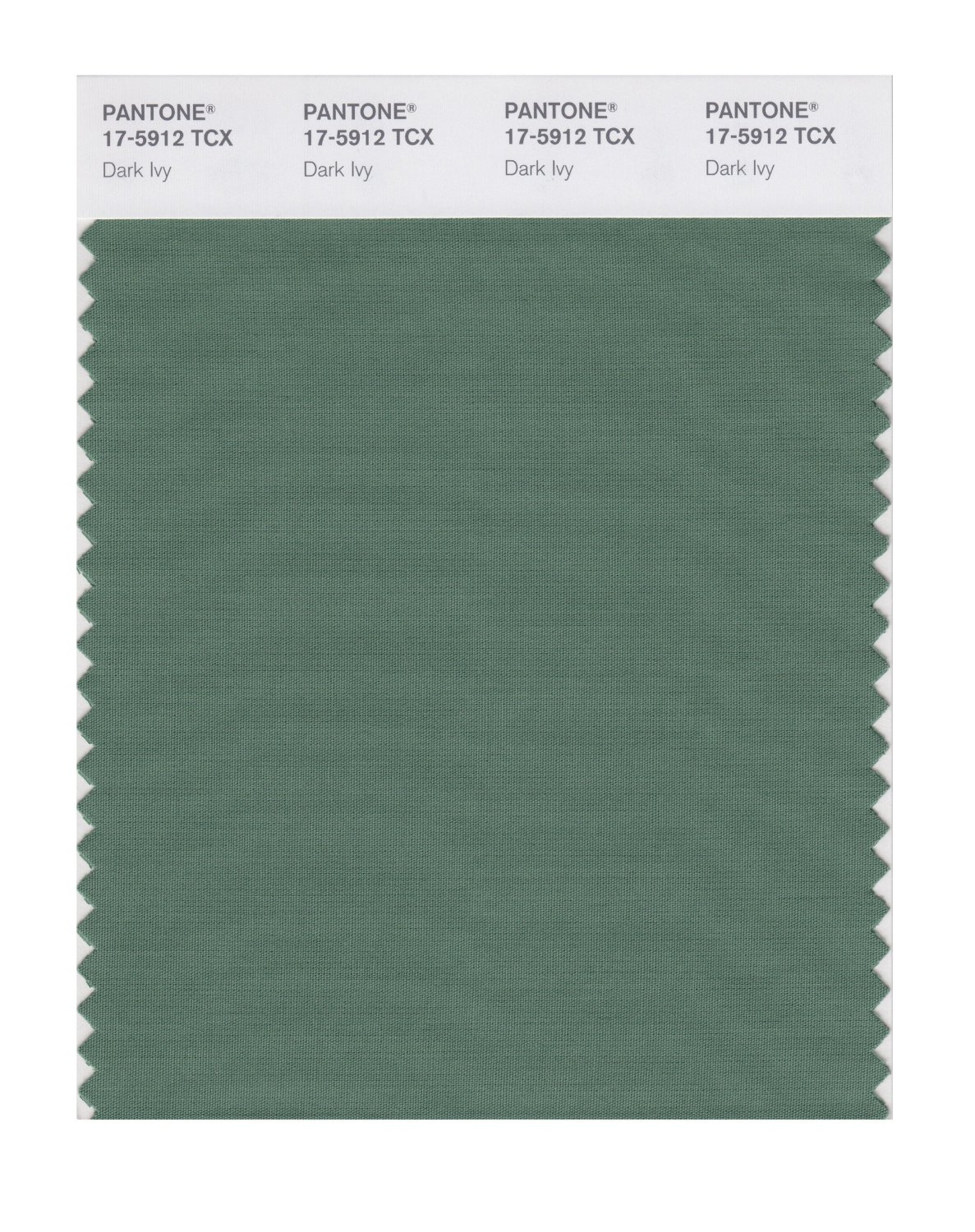 Pantone Smart Swatch 17-5912 Dark Ivy