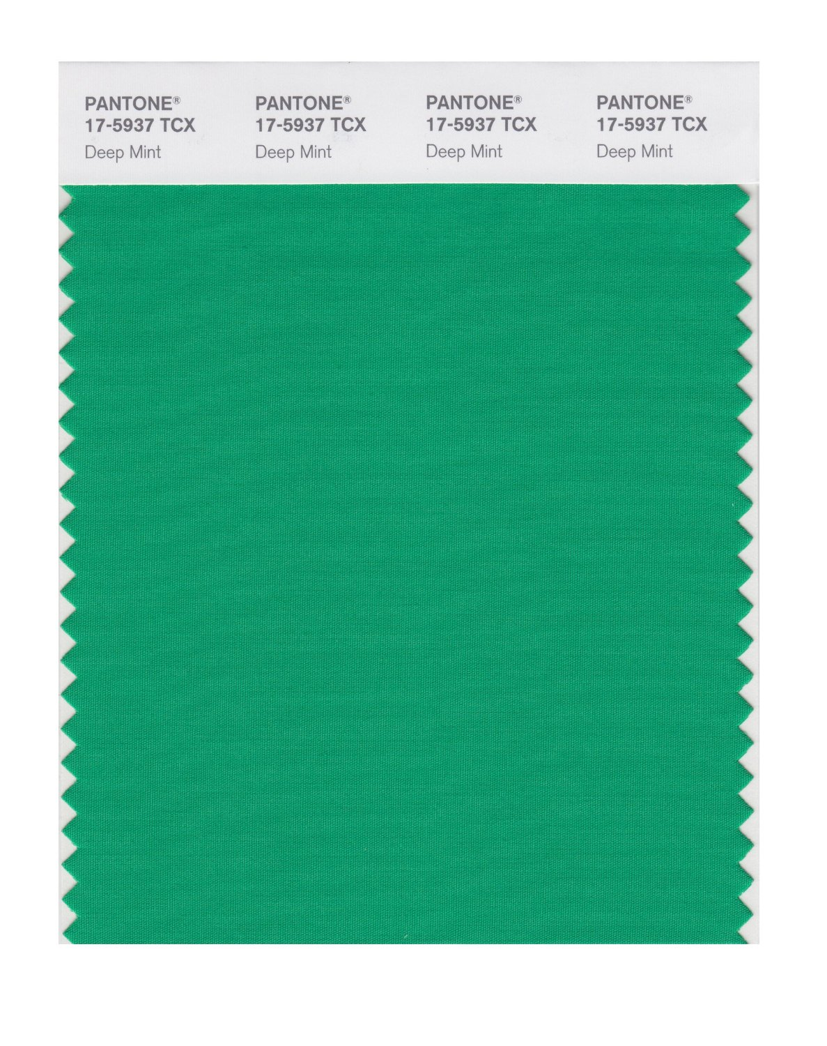 Pantone Smart Swatch 17-5937 Deep Mint