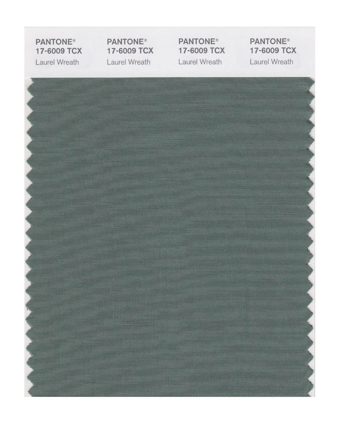 Pantone Smart Swatch 17-6009 Laurel Wreath