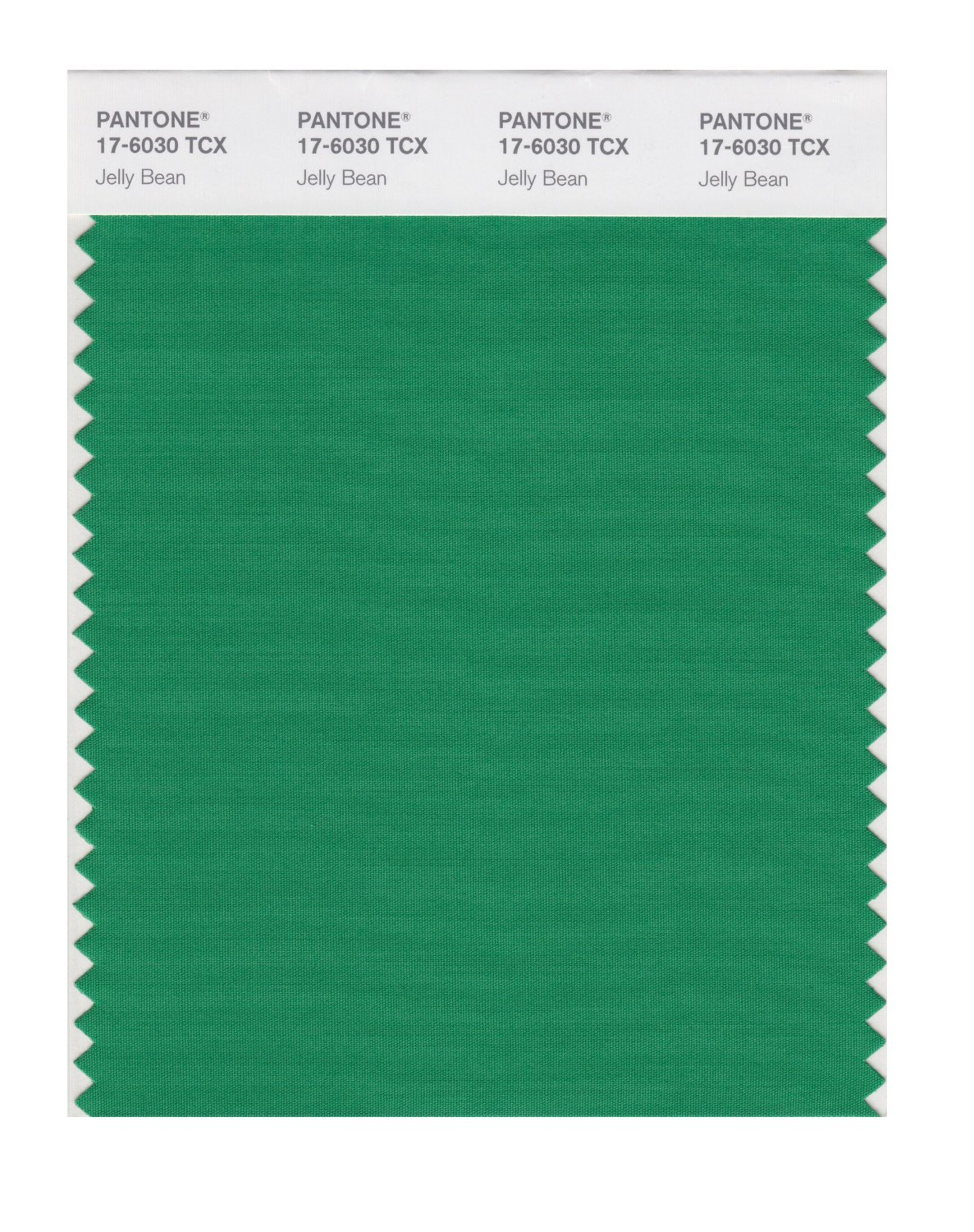 Pantone Smart Swatch 17-6030 Jelly Bean