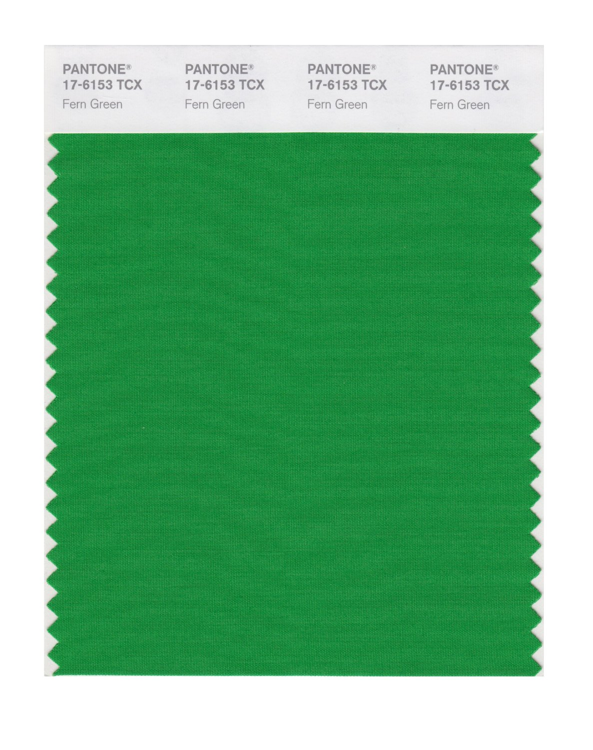 Pantone Smart Swatch 17-6153 Fern Green