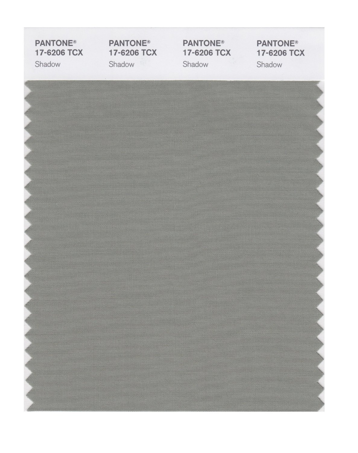 Pantone Smart Swatch 17-6206 Shadow