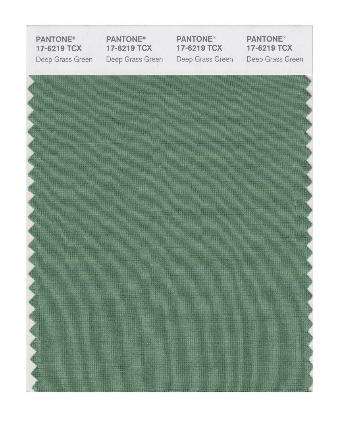 Pantone Smart Swatch 17-6219 Deep Grass Green