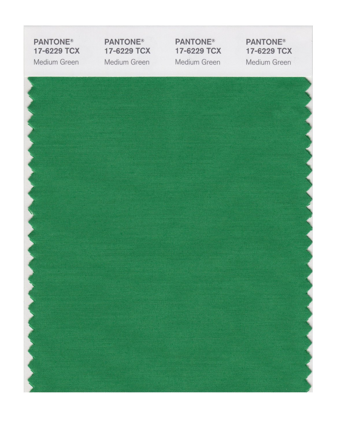 Pantone Smart Swatch 17-6229 Medium Green