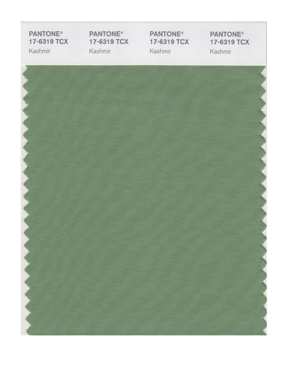 Pantone Smart Swatch 17-6319 Kashmir