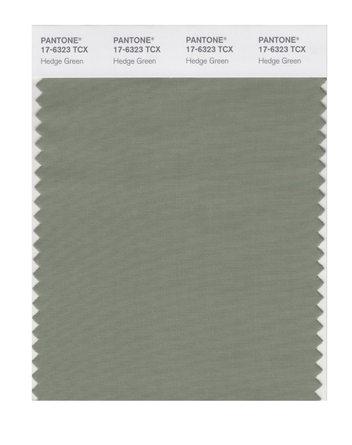 Pantone Smart Swatch 17-6323 Hedge Green