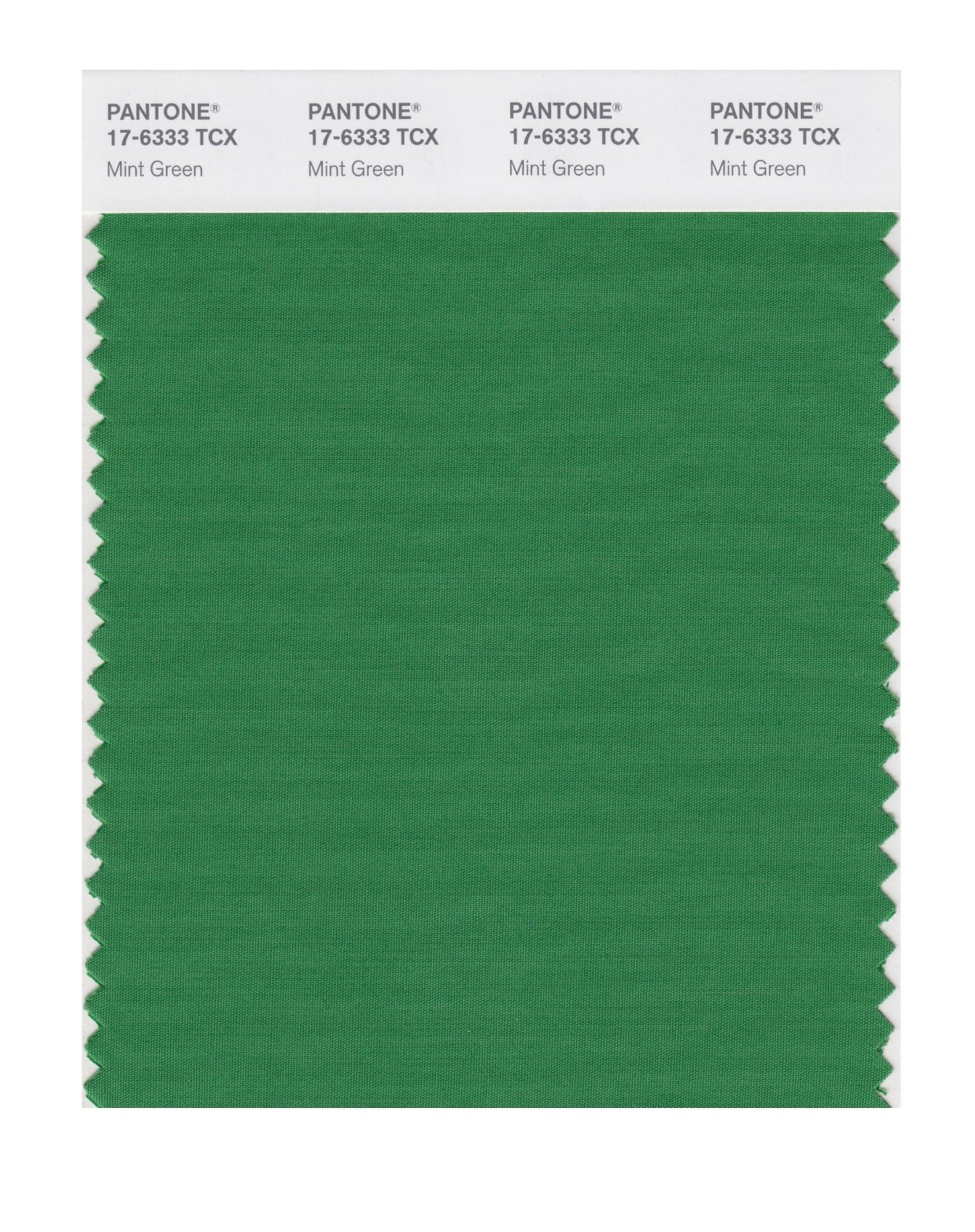 Pantone Smart Swatch 17-6333 Mint Green