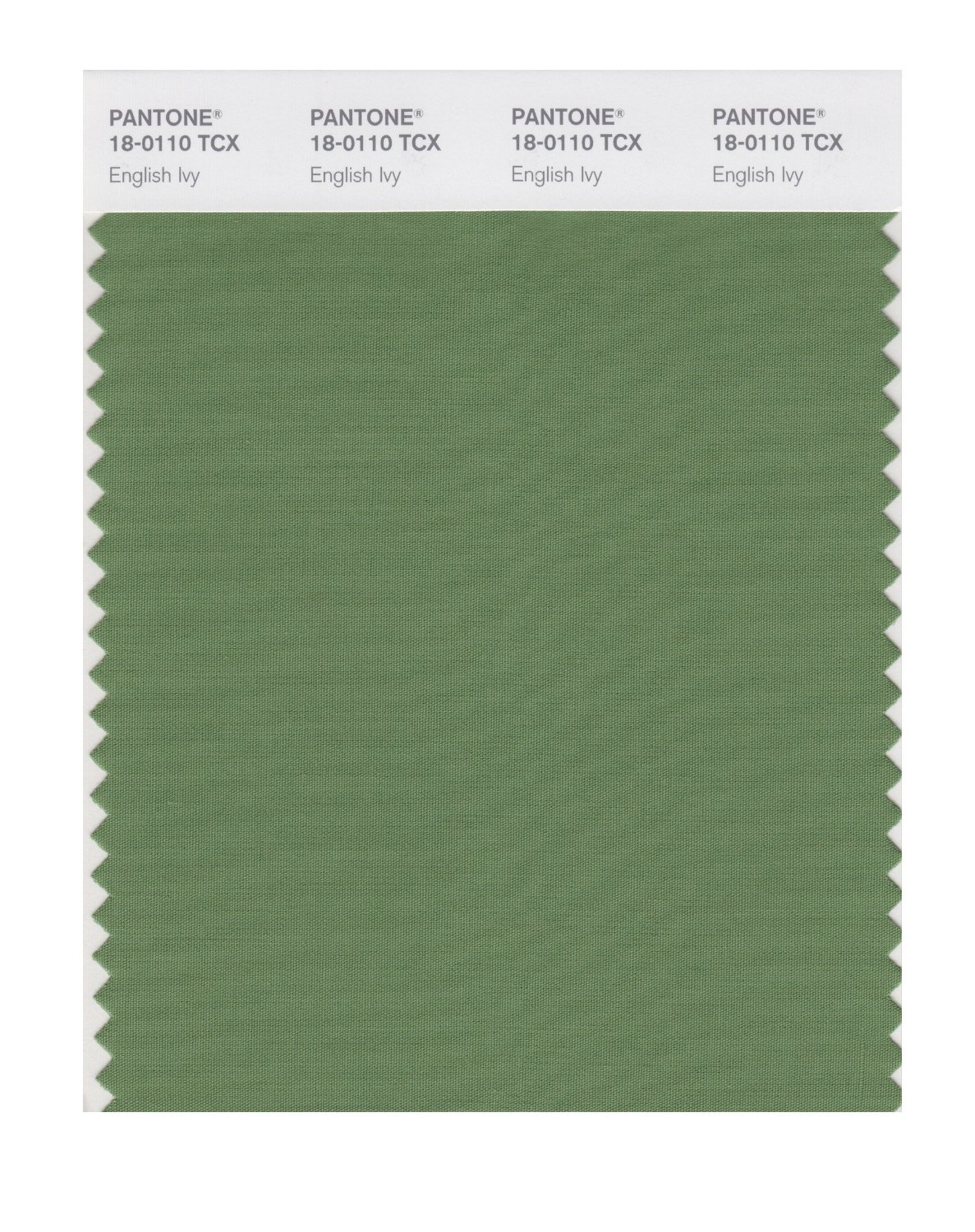 Pantone Smart Swatch 18-0110 English Ivy