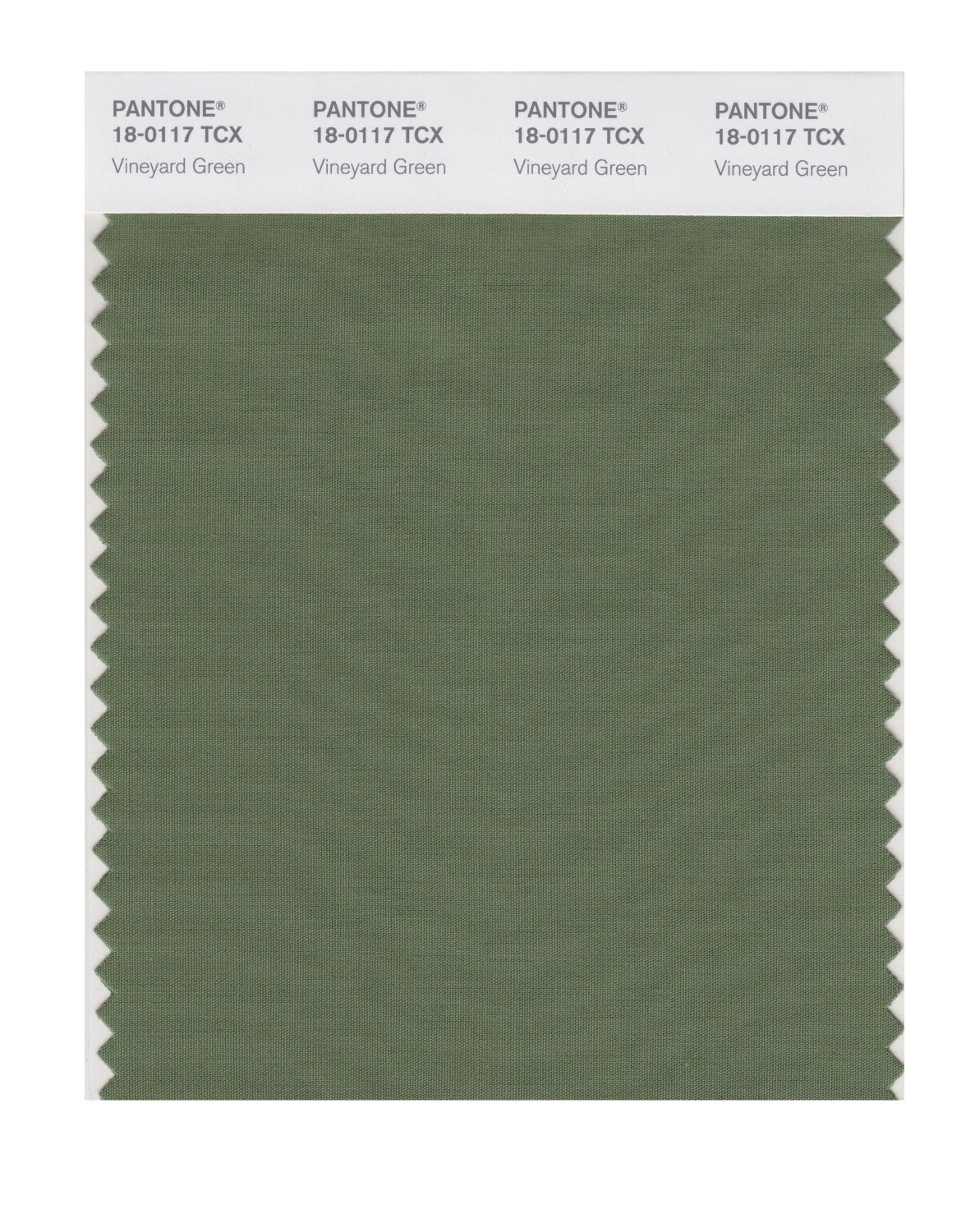 Pantone Smart Swatch 18-0117 Vineyard Green