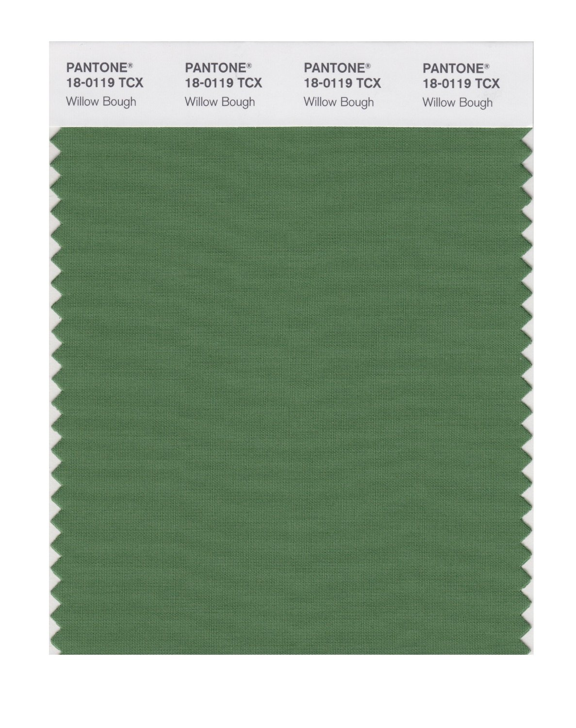 Pantone Smart Swatch 18-0119 Willow Bough