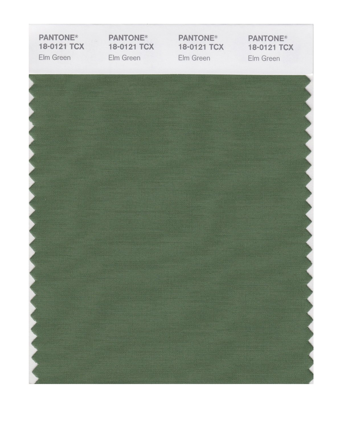 Pantone Smart Swatch 18-0121 Elm Green