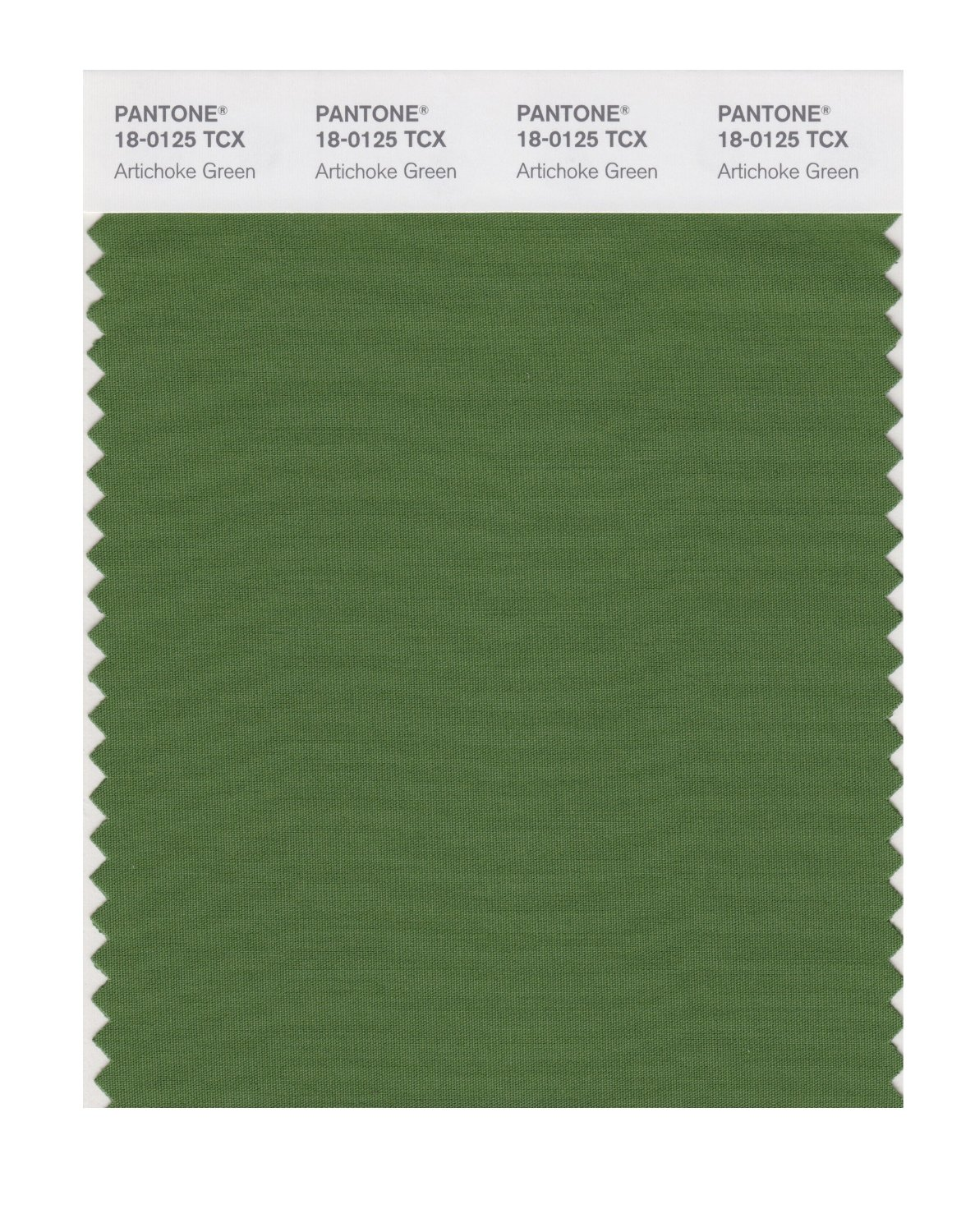 Pantone Smart Swatch 18-0125 Artichoke Green