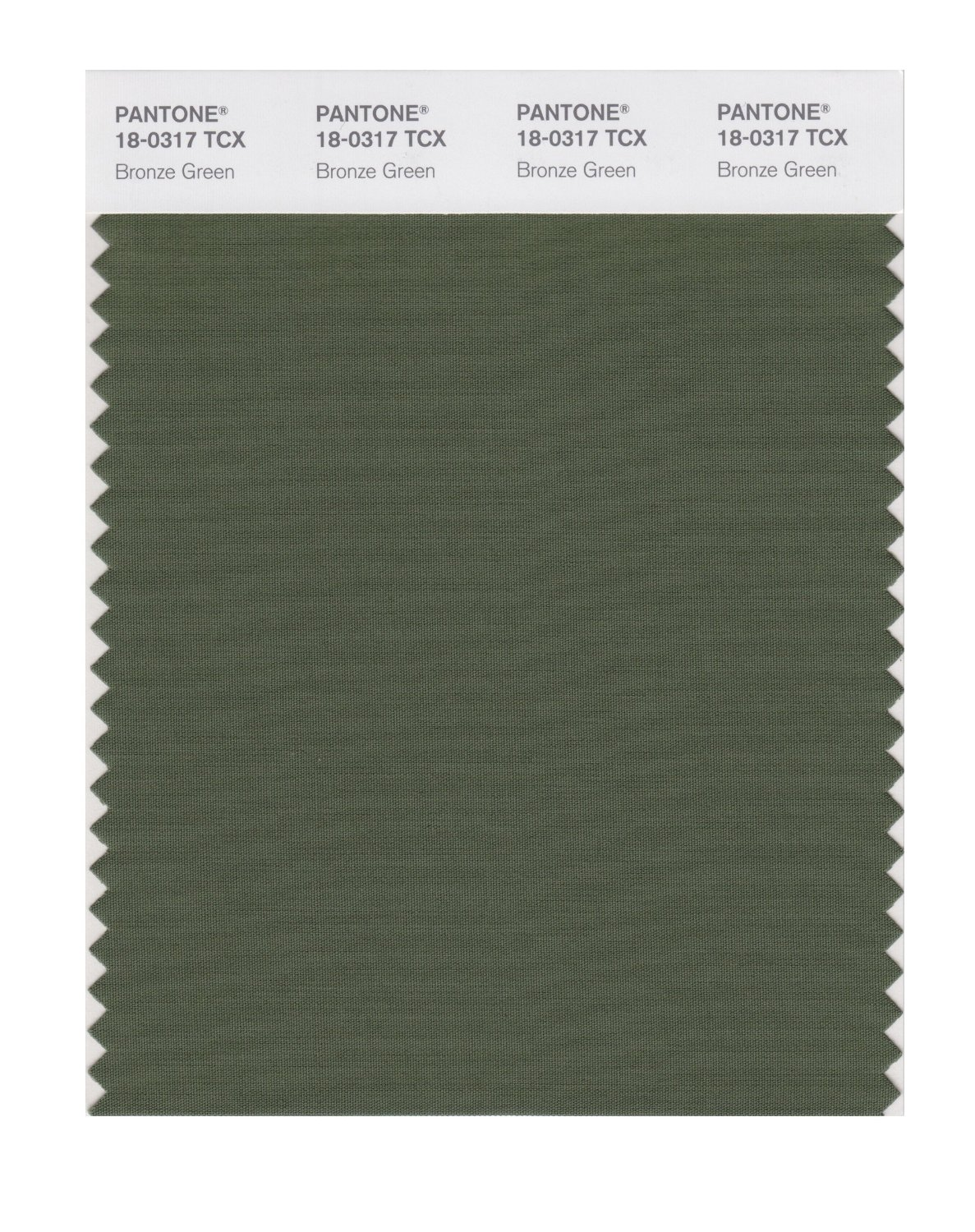 Pantone Smart Swatch 18-0317 Bronze Green