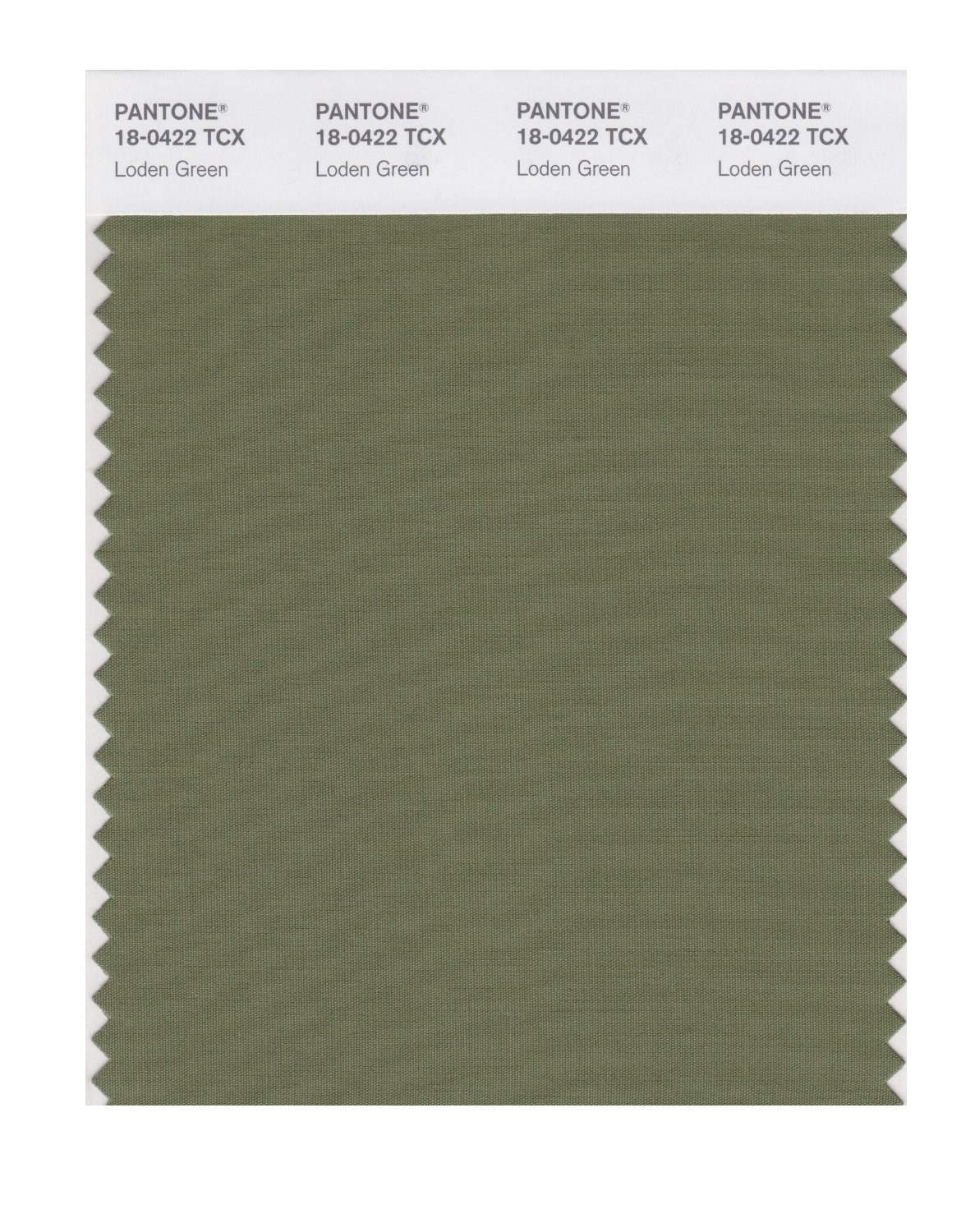 Pantone Smart Swatch 18-0422 Loden Green