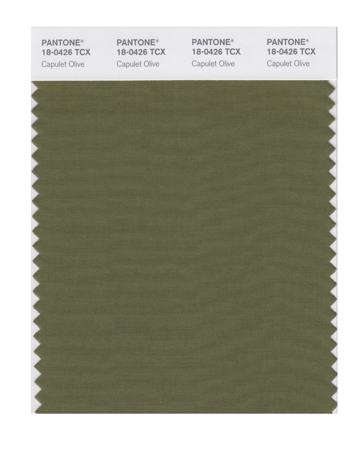 Buy pantone smart swatch 18 0426 capulet olive for Where to buy pantone paint