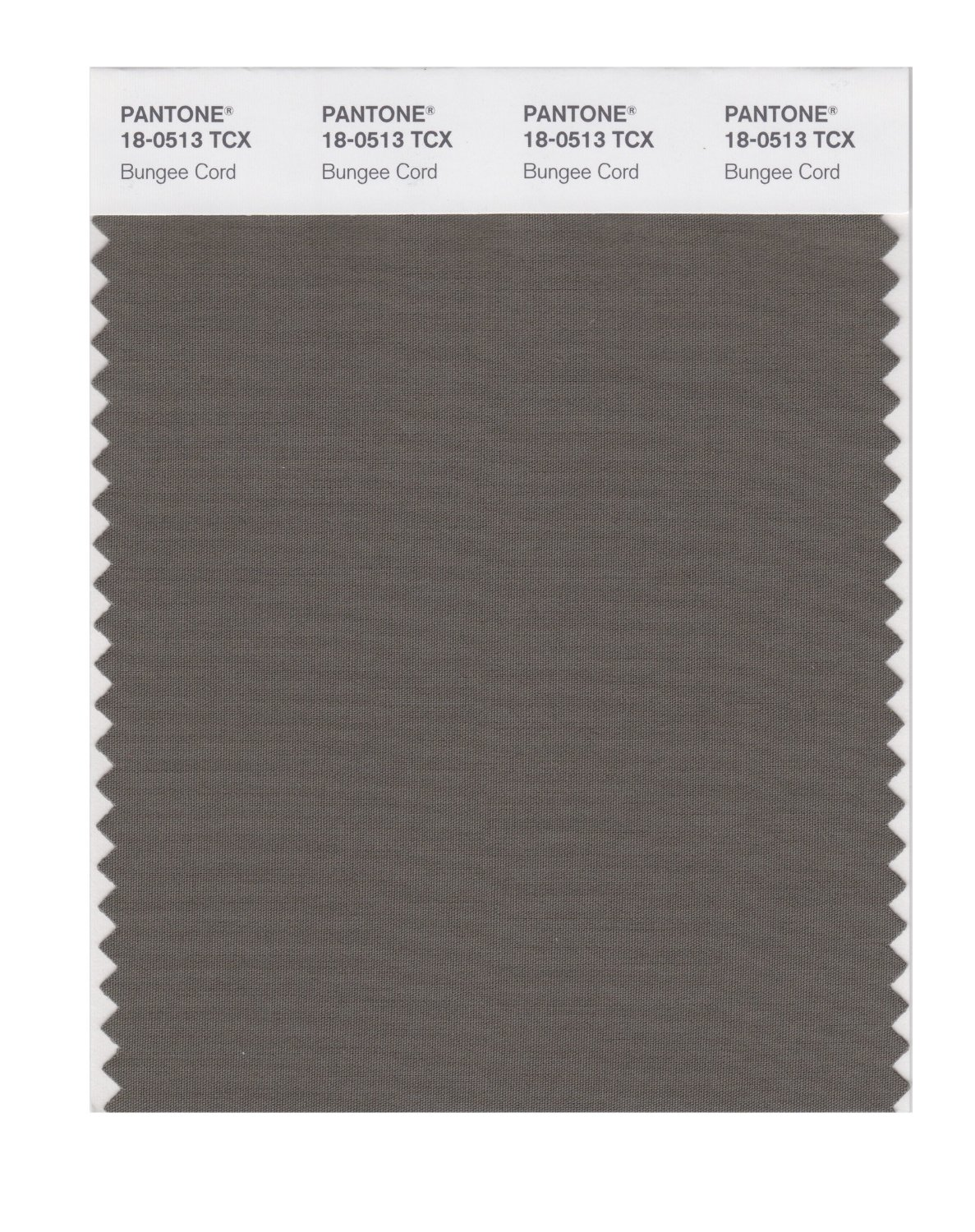 Pantone Smart Swatch 18-0513 Bungee Cord